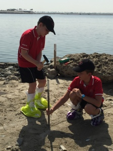 / Tides Project What can we find out about the tidal movement outside the school?